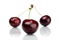 wild cherry, sweet cherry, gean, mazzard Prunus avium, cherries, Studio