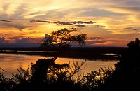 Sunset over the Victoria Nile below Murchison Falls, Uganda, Murchison Falls National Park