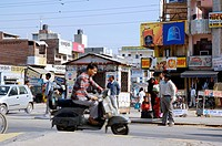 Shops with advertisement, India, Rajasthan