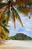 Beautiful Palm Beach in the Seychelles, Seychelles, Praslin