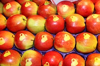 apple Malus domestica, apples with hearts on display