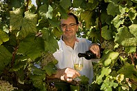 Oenologist Jorge Sousa Pinto in the vineyard of Quinta de Carapeços near the village of Amarante, Porto area, North Portugal region, Portugal, Europe