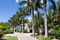 Cuban Royal Palms, Tryp Peninsula Hotel complex, Varadero, Cuba, Caribbean, America