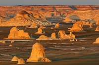 rock formation in desert landscape in evening light, Egypt, White Desert National Park