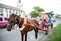 Horse and buggy in front of St. Andrew's Presbytery Church, Georgetown, Guyana, South America