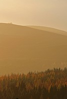 Clachnaben in the distance on an autumn afternoon, Aberdeenshire, Scotland