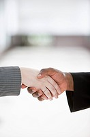 Close-up of handshake of different ethnic people (thumbnail)