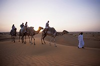 Camel riding through desert, Al Maha Desert Resort, Dubai, UAE