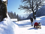 Woman on a Winter walk with her children, children on a sledge, near Garmisch_Partenkirchen, Upper Bavaria, Bavaria, Germany