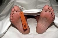 dead body under a sheet