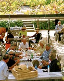 People sitting on the terrace of the restaurant of Black Barn Vineyards, Havelock North, Hawkes Bay, North Island, New Zealand