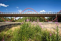 fireweed, blooming sally, rosebay willow_herb, great willow_herb Epilobium angustifolium, Chamaenerion angustifolium, new bridge in Ripshorst an indus...