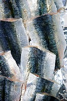 Sardine fish raw fillet skin texture on the marketplace