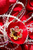 Shiny jewelry over bed or red rose petals