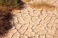 Parched earth on the ground of a wadi, Sahara, Libya