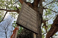 Chankiri Tree used to kill children, Choeung Ek, Killing Fields, Cambodia, Phnom Penh