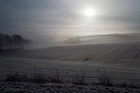 mist in spring with sunbeams, Germany, Saxony, Vogtlaendische Schweiz