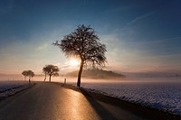sunrise over snovy landscape and morning mist, Germany, Saxony, Vogtlaendische Schweiz