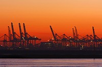 Europort Hoek van Holland in evening glow, Netherlands