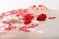 Toes poking out of bath water with rose petals and roses floating in it