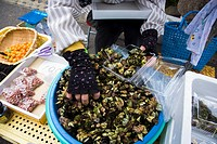 Woman selling barnacles in the coast of Saga  Japan