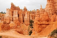 Limestone formations, known as Hoodoos, Bryce Canyon National Park, Utah, USA