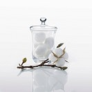 Jar of cotton and plant on a white background