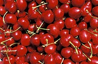 cherries, malemort_du_comtat, france