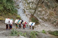 women carrying food into the region of the Annapurna, Nepal