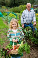 Man and granddaughter picking vegetables in garden