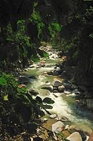 Waterfall at Poring, Sabah, Malaysiaa