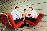 Smiling Businesspeople Having Meeting in office