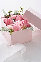 Pink tulips in a gift box