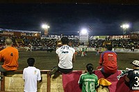 Participants observing the Bull Chasing, San Jose Festival, San Jose, Costa Rica