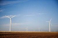 West Texas Wind Turbines, Roscoe County, Texas, USA
