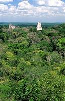 Pyramids, Mayan ruins of Tikal  Guatemala
