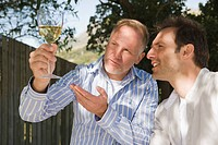 Two friends looking at a wine glass