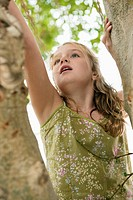 Girl climbing a tree (thumbnail)
