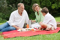 Family enjoying picnic in a park