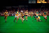All Ireland Hurling Final in 1995, Ireland, Hurling players