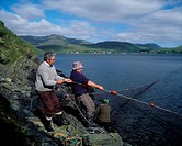 Leenane Village, Co Galway, Ireland, Men hauling in a large fishing net