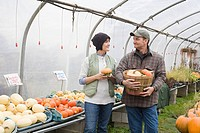 Farmers in greenhouse with pumpkins (thumbnail)
