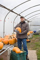 Farmer in greenhouse with pumpkins