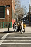 Teacher and pupils crossing road