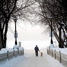 Assiniboine Park, Winnipeg, Manitoba, Canada, Person walking their dog through winter fog