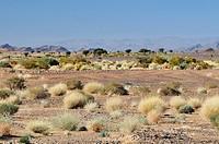 Errachidia province, Morocco, Africa, december 2009