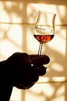 Sala de catas del edificio de Hennessy, Cognac  Poitou Charentes, Francia