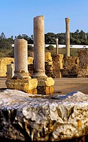Tunez: Carthage  The Antonine Baths built on the 2nd century A D