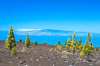 Spain _ Canary Islands _ Tenerife _ National Park Las Canadas del Teide and view of the Island de la Gomera