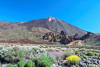 Spain _ Canary Islands _ Tenerife _ National Park Las Canadas del Teide and peak of Teide